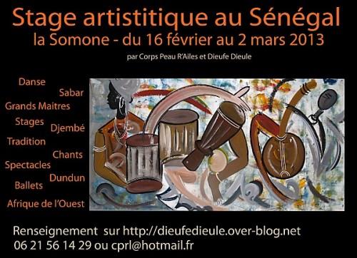stage-senegal-2013-Dieufe-D